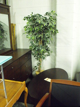 Specialty Items Used Fake Plant